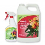 Crowning glory Floralife®
